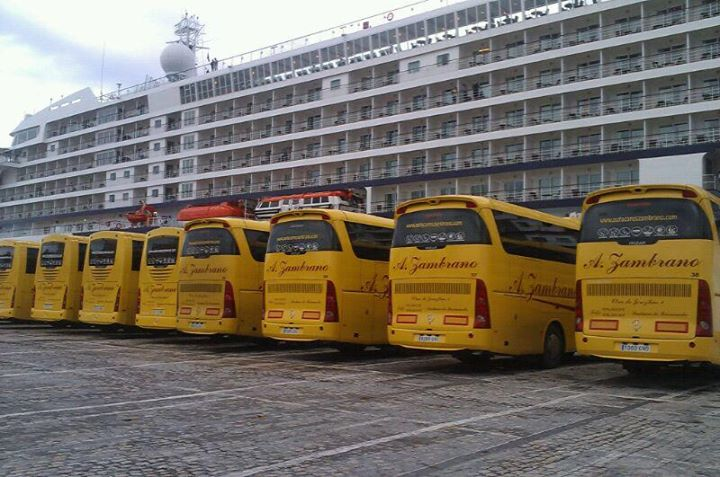 autocares-crucero-1
